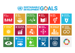 Logo of the 17 UN Sustainable Development Goals in English