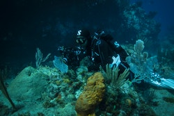 Un membre d'Energy Observer en plongée de reconnaissance dans les eaux martiniquaises