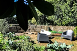 A vegetable garden with 3 chairs in the middle