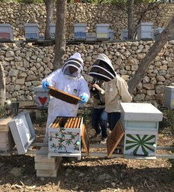 2 beekeepers in front of hives