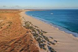 Photo d'une plage au Cap Vert