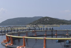 Fish farms in Zadar