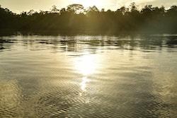Lever de soleil sur le fleuve Maroni